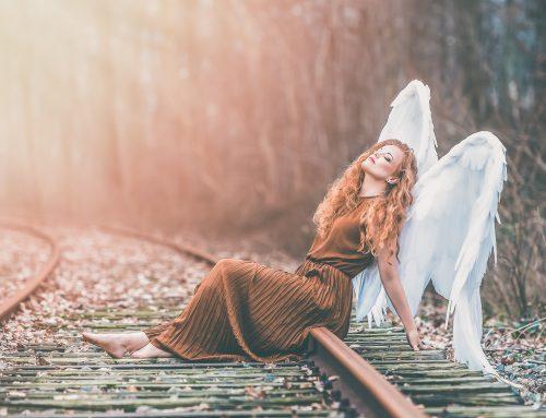 Diva – I skovens dybe stille ro
